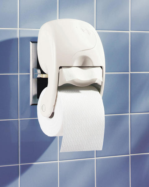 Vandalism in Mahanoy Area High School boys' bathrooms has resulted in toilet paper being issued by request as needed.