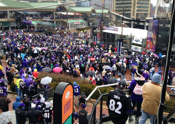 The crowd gathers for the send-off rally for the Baltimore Ravens who are leaving this afternoon for New Orleans to play in the Super Bowl against the 49ers.