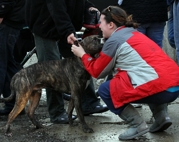 A women and her dog, who was rescued from a three-story building that caught fire in the 800 block of west 33rd Street, are reunited after a man ran into the building to retrieve the dog.