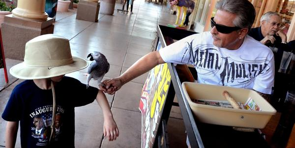 A youngster makes a new friend in downtown Chandler, Ariz. The Phoenix suburb is a good place for desert deceleration. Golf is big here, and it's within easy driving distance of the 11 soon-to-be-active spring training stadiums in the Phoenix metro area.