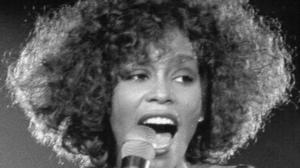 Whitney Houston's brother Michael admits starting her on drugs