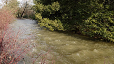 Coxes Creek, just outside Somerset Borough, was still high Tuesday afternoon. Experts warn of the power of rising water.