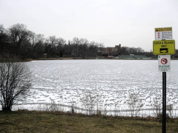 Lake Ellyn has overflowed its banks three times in the last 12 years and officials are considering what to do.