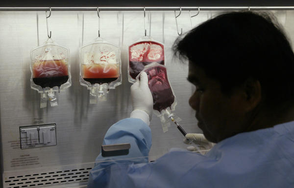 A clinical laboratory scientist draws a sample of blood which will be tested for bacterias. At left, the bags have separated the red blood cells from the white blood cells. The stem cells are found in the white blood cells fluid.