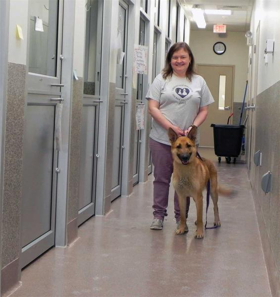 CVAS Director of Communications Jennifer Vanderau and Remmie show off the new, spacious dog den area at the new home of the Cumberland Valley Animal Shelter, 5051 Letterkenny Road West in Chambersburg, Pa., which is set to open at 11 a.m. on Thursday.