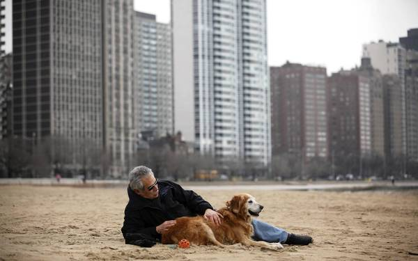 Michael Goodkin enjoys the warm weather Tuesday while sitting with his dog Ginger at the Oak Street Beach in Chicago. Goodkin described the weather as unusual and amazing.