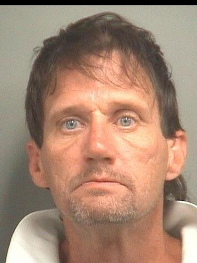 Gary Ellison Johnson, 42, of Lake Worth, is facing charges after a woman's purse was snatched on Jan. 29, 2013 in Greenacres.