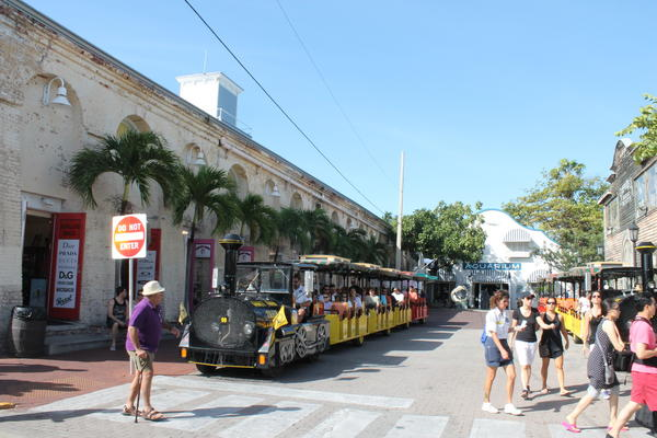 Families can book the Old Town Trolley or Conch Train Tour through Disney Cruise Line's Port Adventures or on their own. The 90-minute tour takes you to all the most popular and historic sites in Key West.