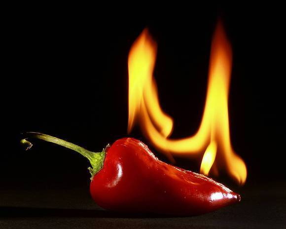 Kirk McKoy's photo shows a chile that is actually on fire.
