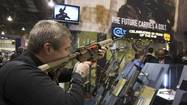 Should there be background checks on all gun sales at gun shows?