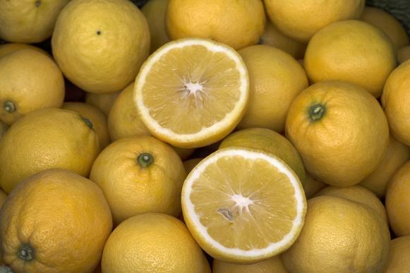 Lemonade fruits, sweet-fleshed lemon hybrids from a variety that originated in New Zealand, grown by Mud Creek Ranch in Santa Paula, sold for the first time at the Santa Monica farmers market.