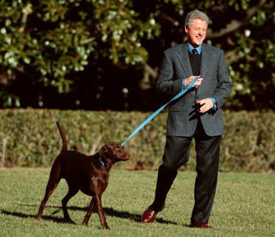 President Bill Clinton walks from the White House with his dog Buddy.