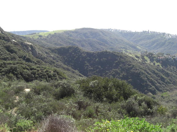 Laguna Canyon Foundation, along with other partners, purchased 56-acres of Rim Rock Canyon, pictured here, for $1.5 million.