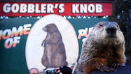 Groundhog Day in Punxsutawney [Pictures]