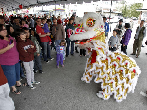 Members of the San Gabriel Valley Chinese Cultural Association perform the Lion Dance for a large crowd during the Third Annual Lunar New Year Festival at the Pacific Asia Museum in Pasadena on Saturday, February 2, 2013.