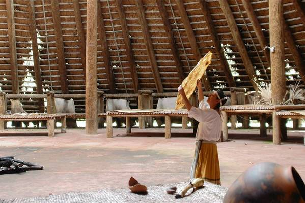 An interpreter at Mission San Luis in Tallahassee examines a large turtle shell recently in the Apalachee council house, a reconstruction of a late 17th-century building that could hold as many as 3,000 people for ceremonies and gatherings.