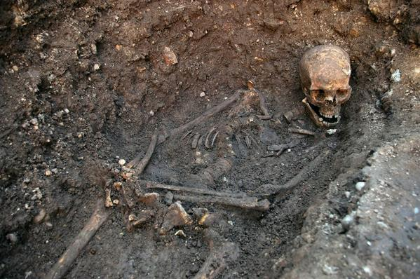 Remains of King Richard III - Skeletal remains of King Richard III
