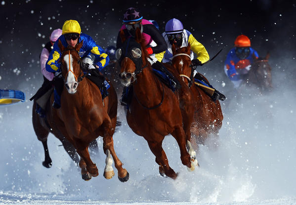 Tepmokea ridden by Shane Kelly (L) leads the field into the final turn during the Grand Prix Guardaval Immobilien race at the White Turf horse racing meeting held on the frozen Lake St Moritz on February 3, 2013 in St Moritz, Switzerland.