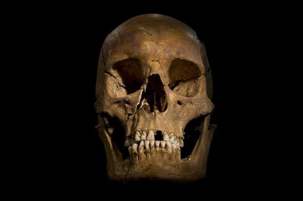 "Citing several types of evidence, scientists said Monday it is ""beyond reasonable doubt"" that a skeleton unearthed from a parking lot last fall is that of King Richard III."