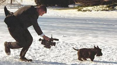 R.I.P., Barney: How 'Barney Cam' made George W. Bush's dog a Web star