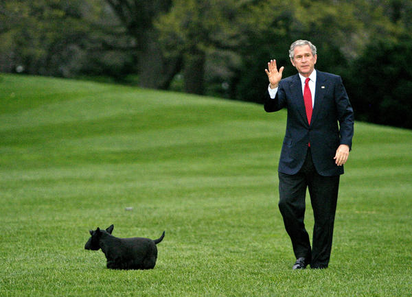President George W. Bush with Barney on the South Lawn after arriving on Marine One.
