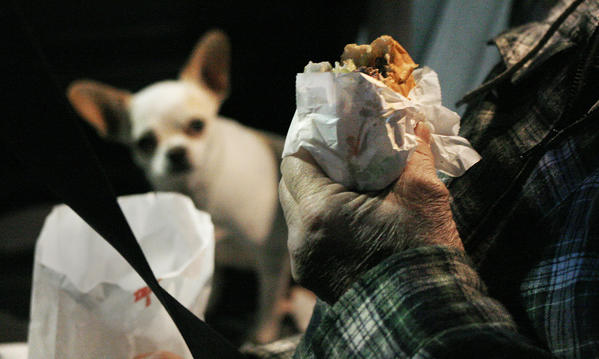 "In his owner's car in the parking lot, Tito, one of Jimmy Kidd's traveling chihuahuas, waits patiently for his plain What-a-burger that he will split with Kinsey, the other dog.  Kidd buys an extra for the dogs when he goes for dinner. <br /><br />  ""As part of doing a photo story on What-A-Burger, I went in the evening looking for an Edward Hopper ¿Night Café¿ type photo.  While there, I wandered around the parking lot, looking for people eating in their car to flesh out the photos.  In one car, Tito, one of Jimmy Kidd's traveling Chihuahuas, was waiting patiently for his plain What-a-Burger.  The other dog, Kinsey, was afraid of the flash, but luckily, Adrin had lent me a 135 f2 which let me shoot with available light.  I did two versions, dog in focus, hamburger in focus.  Since the story was about What-A-Burger and not the dog, this seems like the better choice."""