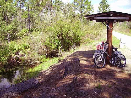 Florida Getaways of the Day - <b>Polk City:</b> Cycling into the Green Swamp