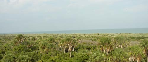 Florida Getaways of the Day - <b>Turtle Mound:</b> Built on a heap of history