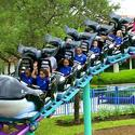 <b>Orlando:</b> Whale ride is a family-friendly coaster