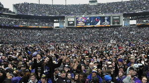An outsider reflects on the fervent devotion of Ravens fans
