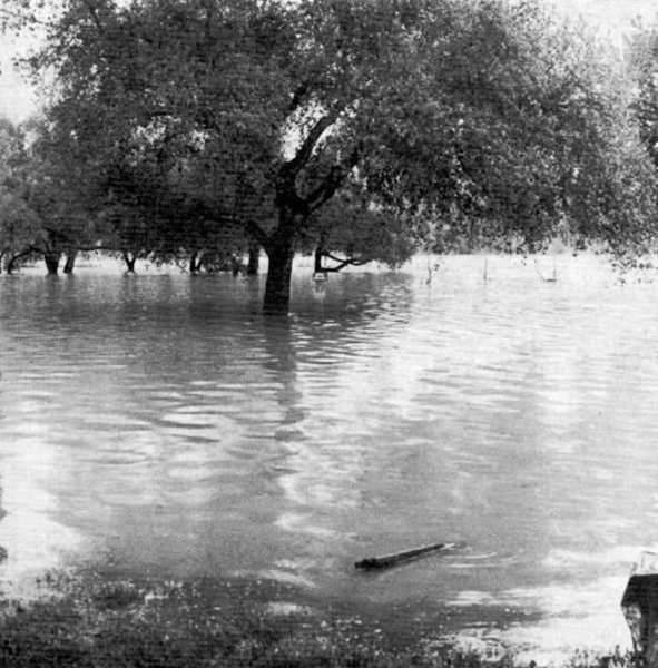 The baseball field area at Oak Grove Park was underwater 40 years ago this week. A storm dropped more than five inches of rain in two days.