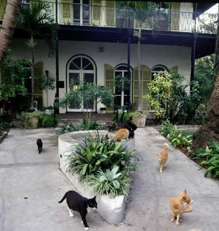 Florida Getaways of the Day - <b>Key West:</b> Author