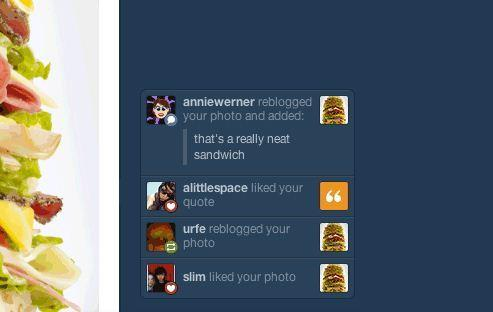 Tumblr notifications