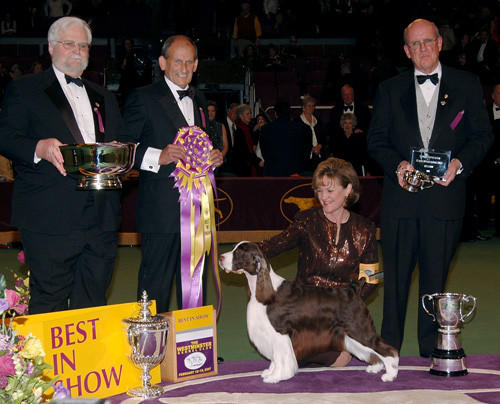 Diamond Jim, an English Springer Spaniel, won the 2007 Best in Show award.