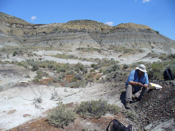 UC Berkeley scientist Paul Renne examines a volcanic ash sample at the Hell Creek Formation in Montana. New dating techniques suggest with greater accuracy that the Chicxulub asteroid impact played a role in dinosaurs' extinction.