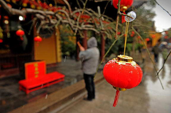 A lantern hangs on a tree outside a temple in Shanghai ahead of the Lunar New Year.