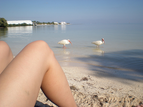 Florida Getaways of the Day - <b>Florida Keys:</b> Get your feet wet at Anne