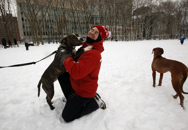 Nathan Scheidler of Brooklyn, N.Y., gets a kiss from a friend's dog at the Brooklyn War Memorial park, where many had gathered to play in the snow Saturday.