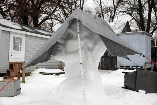 A seven-foot-tall snow sculpture of Jesus' head stands in the backyard of an Elgin home near Wellington and Watch Streets on Sunday.  It was covered with a tarp Sunday morning, due to the rain in the area.