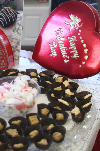 Kilwin's of Boyne City offered samples of fudge, taffy and chocolate-dipped animal crackers.