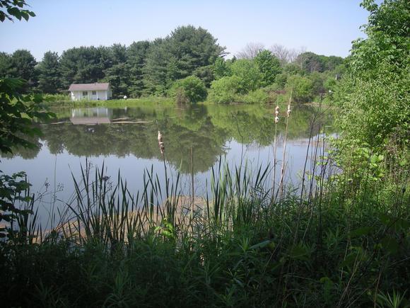 Travel to Augusta-Anne Olsen State Nature Preserve near Wakeman, Ohio