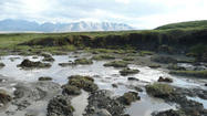 Sunlight stimulates release of carbon dioxide in melting permafrost