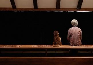 A shot from Jafar Panahi's 'Closed Curtain'