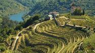 Portugal: Douro River cruise visits small villages and vineyards