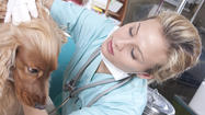 Veterinary technologist and technician careers: Pet projects