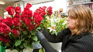 PICTURES: At the flower shop, Cupid draws back his bow
