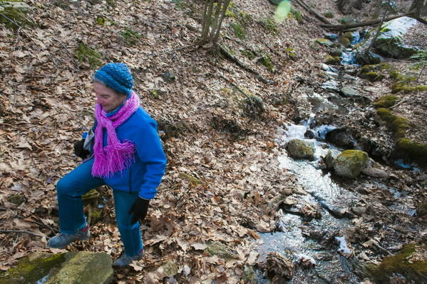 Susan Barlow, who has led many efforts to establish and maintain hiking trails in Manchester, hikes the town's trail near Upper Case Pond.