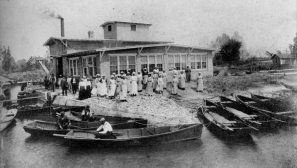 When Capt. John C. Robinson expanded his Chesapeake Avenue seafood business to include crab packing in 1910, black men and women provided much of the labor that caught the crabs and picked them.