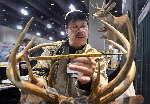 Kevin Thorburn, of North Branford, measures a white-tailed deer antler rack at the Northeast Hunting & Fishing Show at the Connecticut Convention Center Friday. Thorburn is a member of Northeast Big Buck Club, an organization that deals specifically with the white-tailed deer and keeps detailed records of the trophy animals hunted.