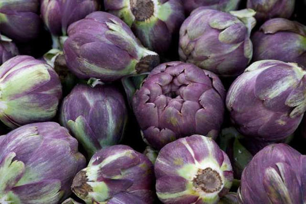 Purple artichokes
